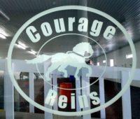 Courage Reins