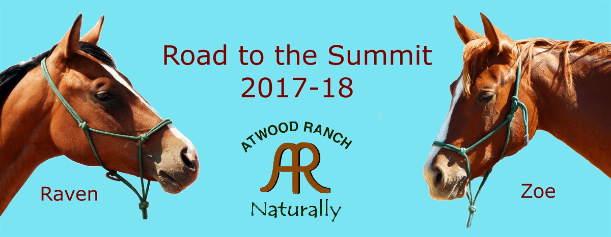 Road to the Summit 2018