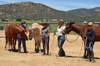 Parelli Charity Clinic 3L Ranch