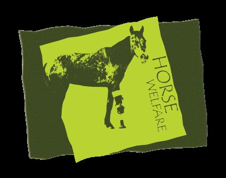 horse welfare art