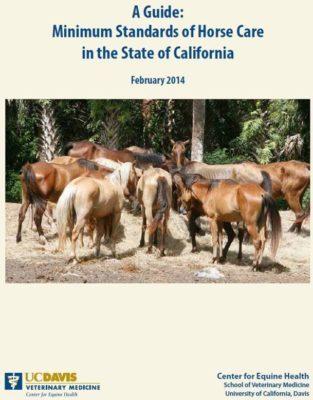Minimum Standards of Horse Care